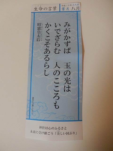 DSCN3465.JPG